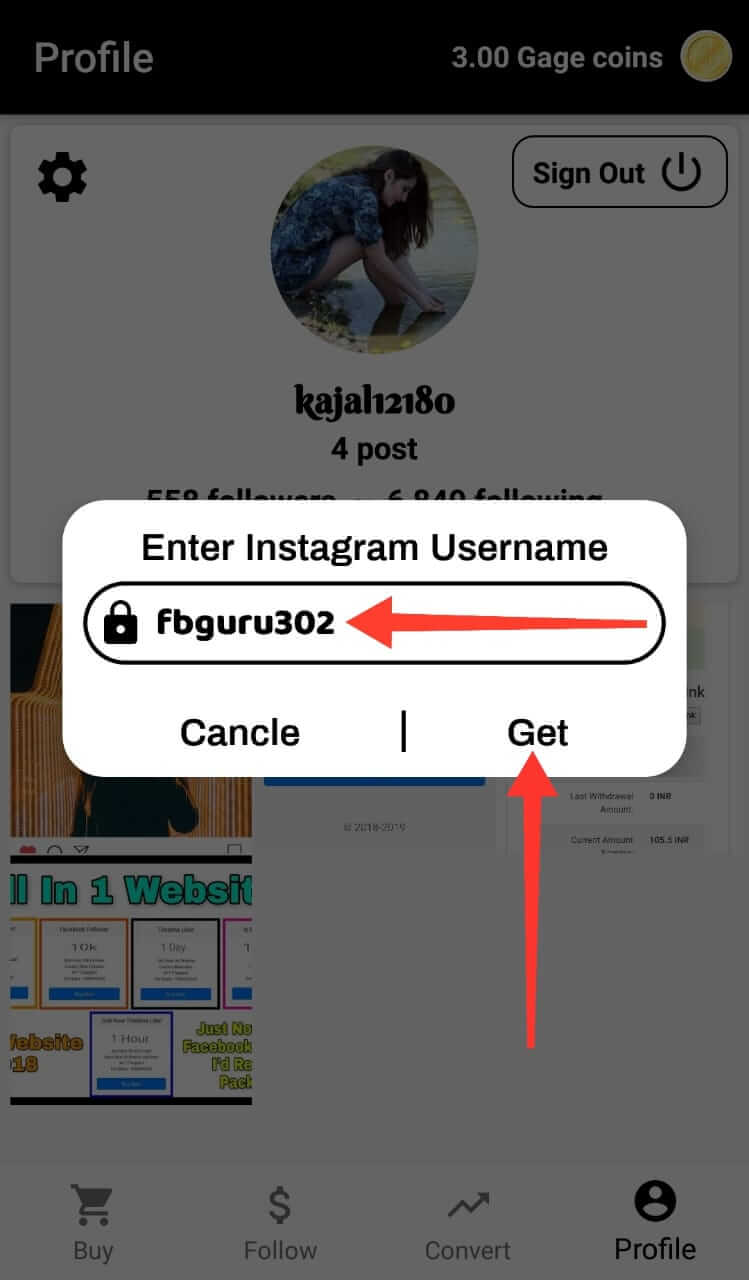 Enter Real Instagram Username