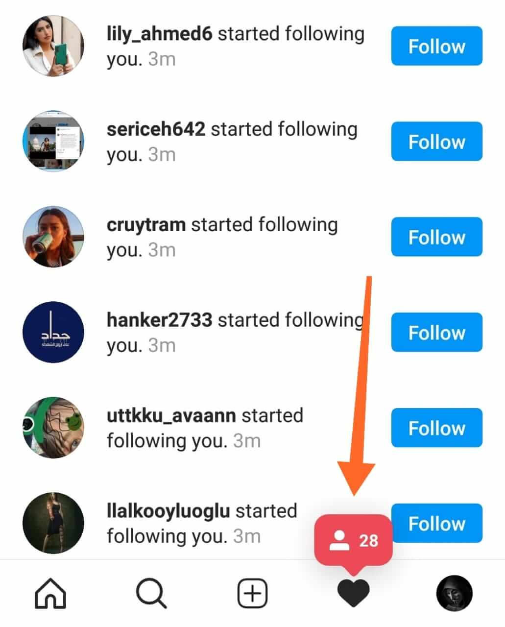 Real Followers On Instagram